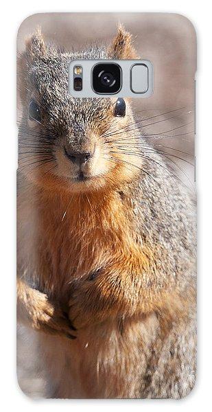 Squirrel Galaxy Case by Art Whitton