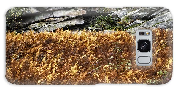 Stone Wall And Fern Galaxy Case