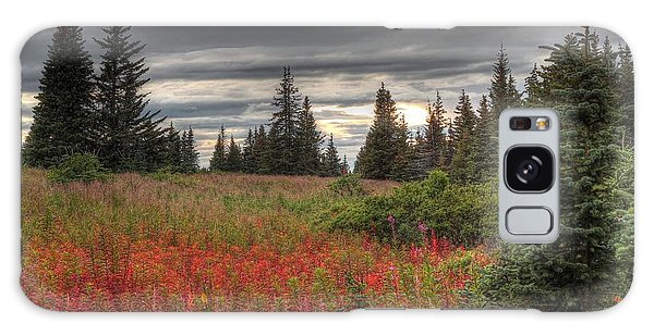 Storm Clouds In Fall Galaxy Case by Michele Cornelius