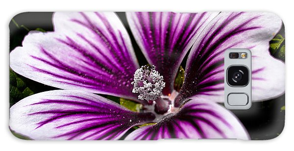 Stripped Blossom Galaxy Case by Larry Carr