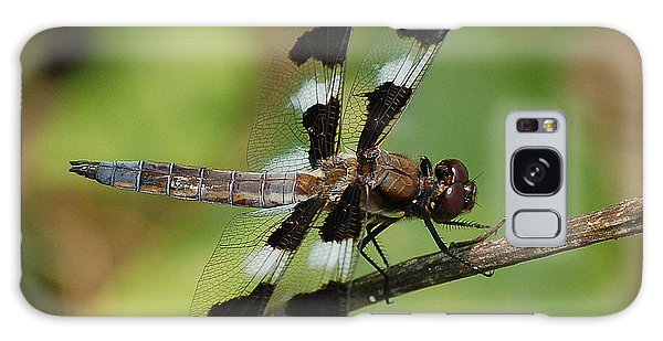 Summer Dragonfly Galaxy Case