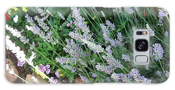 Summer Lavender Galaxy Case