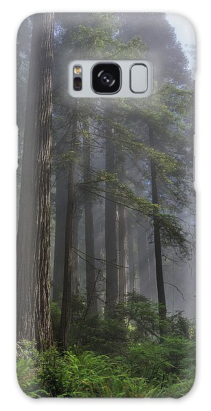 Sun Breaking On Redwoods Galaxy Case