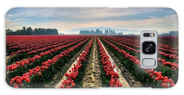 Sun Kissed Tulips Galaxy Case