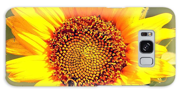 Sunflower And Bee Galaxy Case by Paul  Wilford