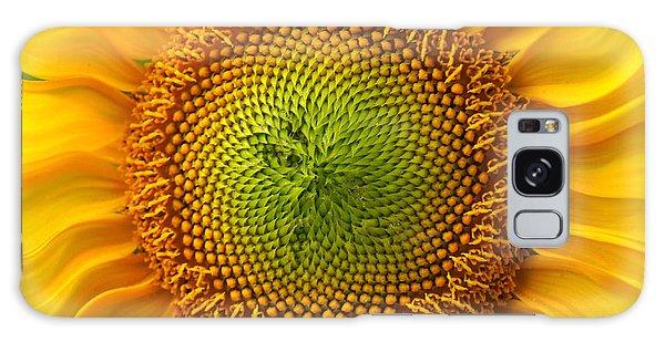 Sunflower Fantasy Galaxy Case