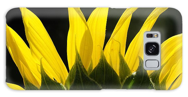 Sunflower Greeting The Morning Galaxy Case