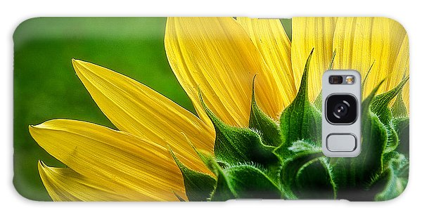 Sunflower Galaxy Case