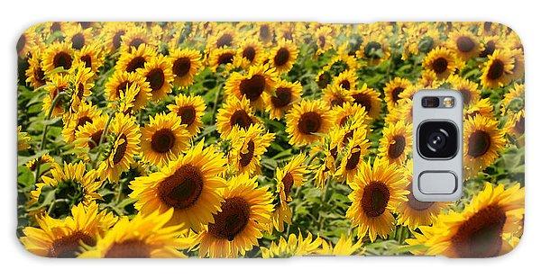 Sunflower Panorama Galaxy Case
