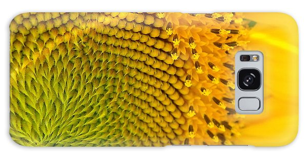 Sunflower Study 1 Galaxy Case