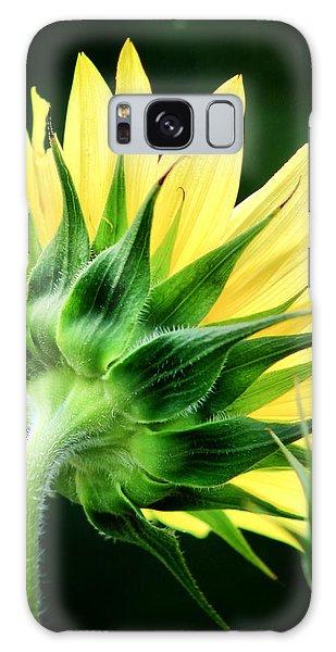 Sunflower With Bee Galaxy Case by Lynne Jenkins