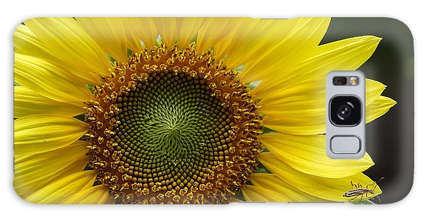 Sunflower With Insect Galaxy Case by Daniel Reed