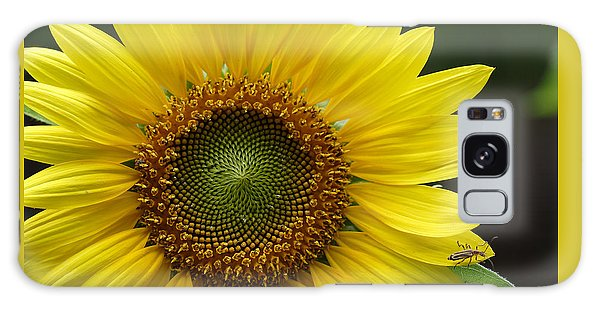 Sunflower With Insect Galaxy Case