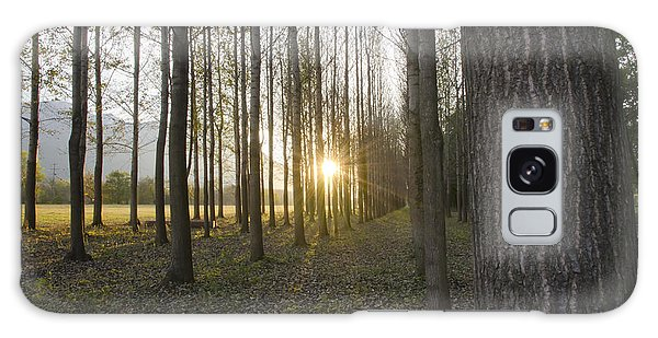 Sunlight In The Forest Galaxy Case
