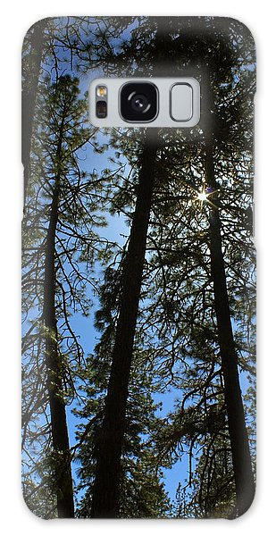 Sunlight Through The Pines Galaxy Case by Tyra  OBryant