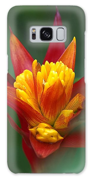 Sunrise - Sunset Galaxy Case by Anne Rodkin