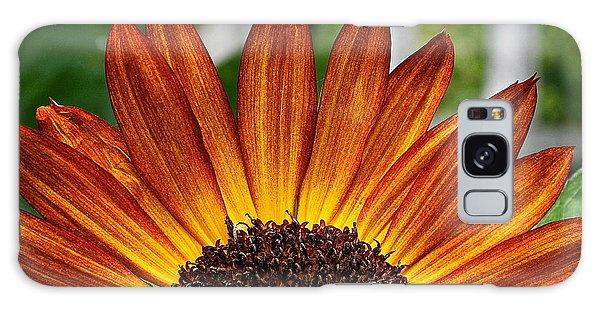 Sunrise Floral Galaxy Case
