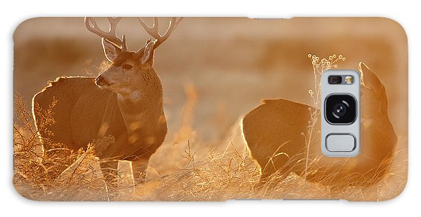 Sunrise Mule Deer Galaxy Case