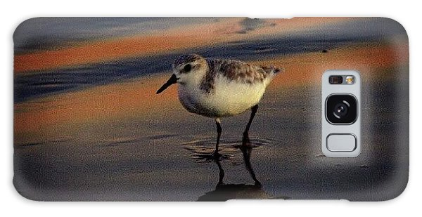 Beautiful Galaxy Case - Sunset And Bird Reflection by James Granberry