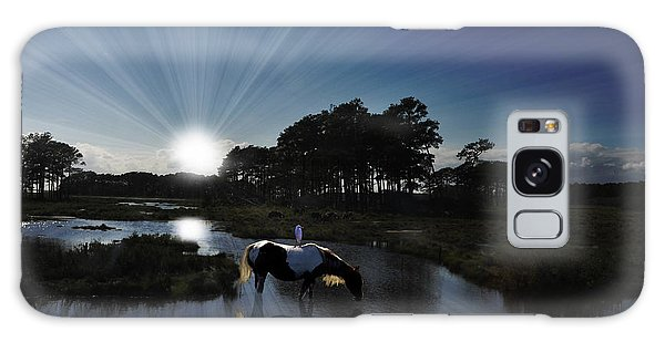 Galaxy Case featuring the photograph Sunset Assateague Island With Wild Horse by Dan Friend
