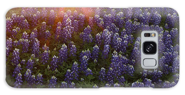 Sunset Over Bluebonnets Galaxy Case