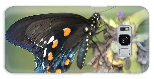 Swallowtail 1 Galaxy Case