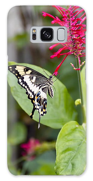 Swallowtail Butterfly Galaxy Case