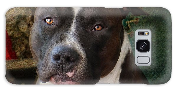 Bull Galaxy Case - Sweet Little Pitty by Larry Marshall