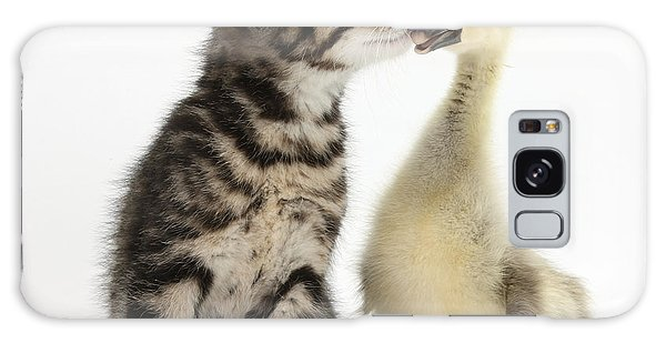 Gosling Galaxy Case - Tabby Kitten With Yellow Gosling by Mark Taylor