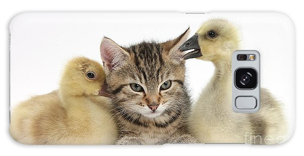 Gosling Galaxy Case - Tabby Kitten With Yellow Goslings by Mark Taylor