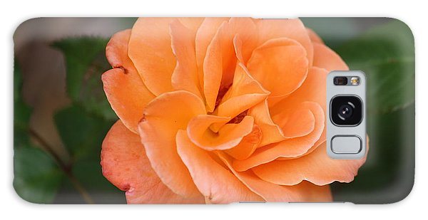 Tangerine Rose Galaxy Case