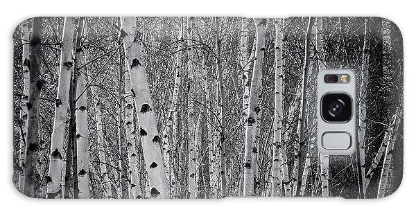 Tate Modern Trees Galaxy Case