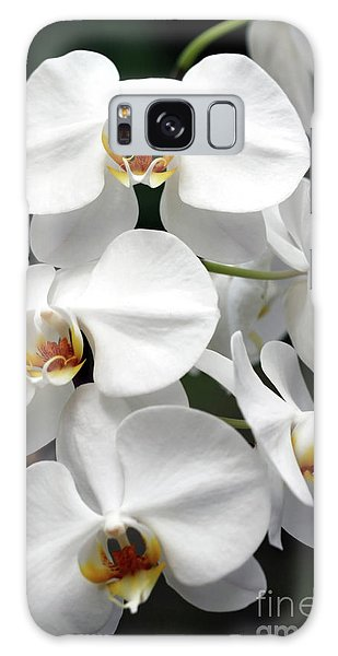The Beauty Of Orchids  Galaxy Case