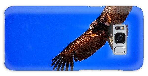 Condor Galaxy S8 Case - The California Condor by David Patterson