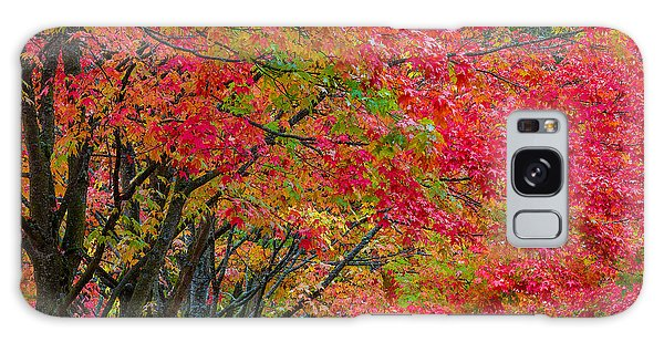 The Color Of Fall Galaxy Case by Ken Stanback