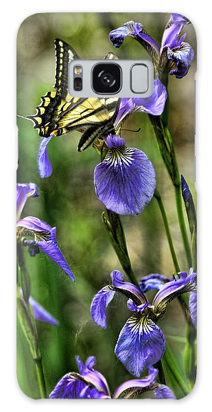 The Swallowtail Galaxy Case