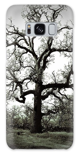 The Tree Galaxy Case by Holly Blunkall