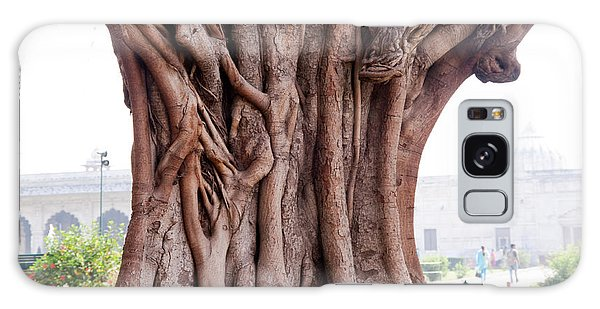 The Twisted And Gnarled Stump And Stem Of A Large Tree Inside The Qutub Minar Compound Galaxy Case by Ashish Agarwal