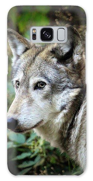 The Wolf Galaxy Case by Steve McKinzie