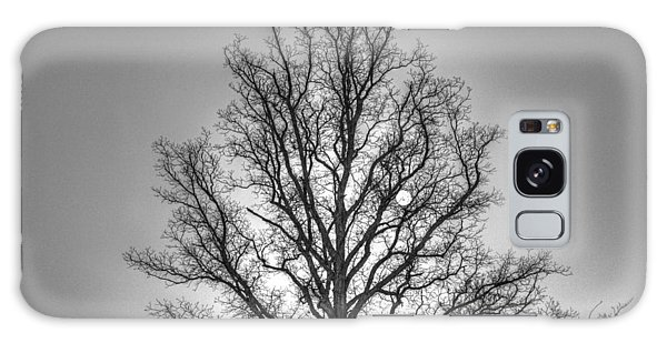 Through The Boughs Bw Galaxy Case by Dan Stone