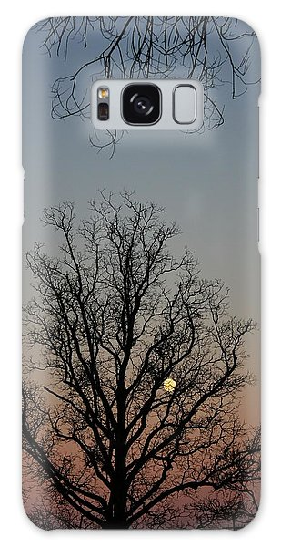 Through The Boughs Portrait Galaxy Case by Dan Stone