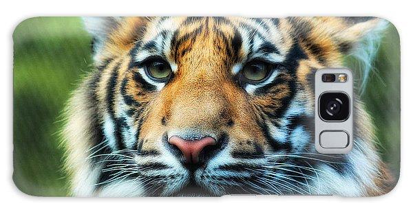 Tiger Galaxy Case by Billie-Jo Miller