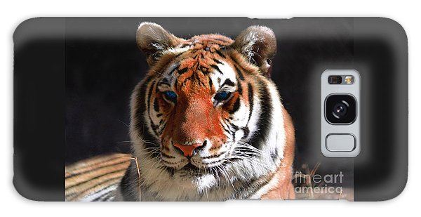 Tiger Blue Eyes Galaxy Case by Rebecca Margraf