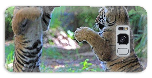 Tiger Cubs Boxing Galaxy Case
