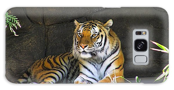 Tiger Life Galaxy Case by Wendy McKennon