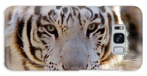 Tiger Stripes Exotic Animal Sanctuary 8 Galaxy Case by Dan Wells
