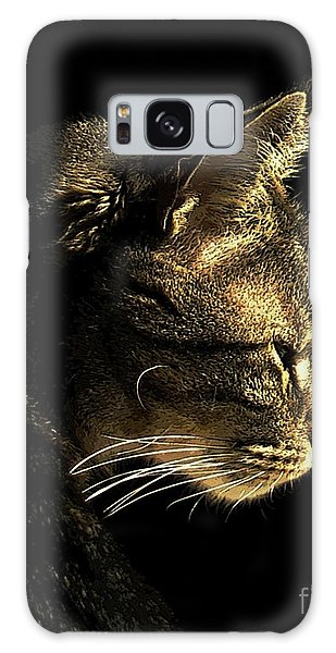 Tiger Within Galaxy Case