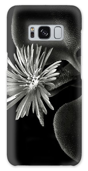Tiny Ice Plant In Black And White Galaxy Case