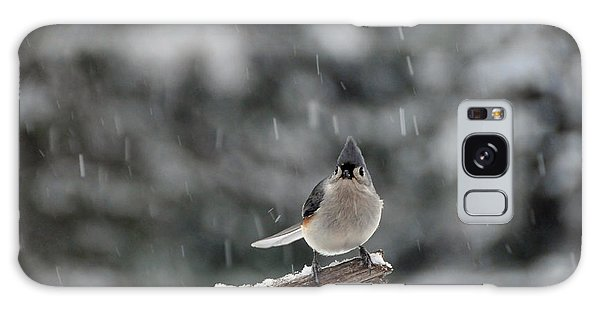 Titmouse Endures Snowstorm Galaxy Case by Mike Martin