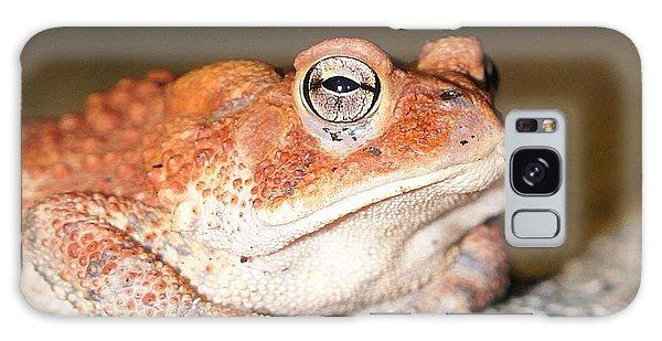 Toad You So Galaxy Case
